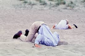 Image result for burying head in sand
