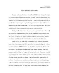 essay nursing career with essay example for nurse and mba essay  self reflective essay essay about nursing essay on nursing