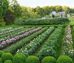 Small Picture 91 best Martha Stewarts garden farm images on Pinterest