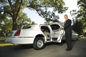 professional limo driver resume