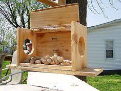 Jack in the Box <b>Squirrel Feeder</b> | birdhouses and feeders | Squirrel ...
