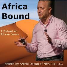 MEA Risk LLC