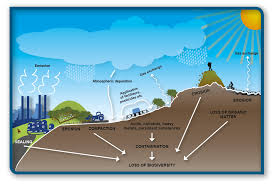 soils   scotland    s environment webimpact of human activities on agricultural soil  causing risk of soil degradation