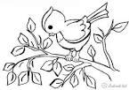 Птички раскраска
