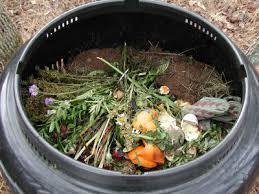 Back Yard Composting Bin