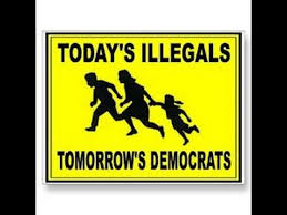 Image result for illegal immigrants voting