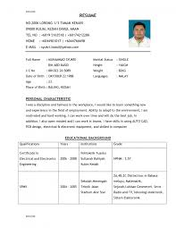 1st line support cv template examples of a good resume template 7 best professional resume layout examples