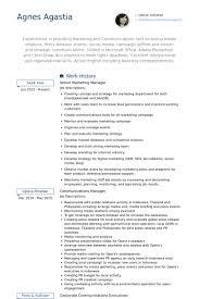 senior marketing manager resume samples central head corporate communication resume