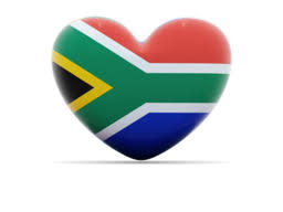 Image result for south african flag
