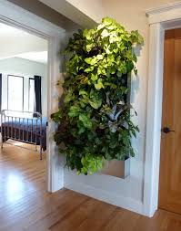 diy living wall indoor