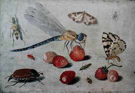 Insects in art - Wikipedia