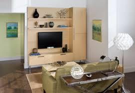 <b>Eco Friendly Bamboo</b> Wall Unit - Модернизм - Гостиная - Нью ...