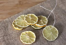 Lemon And Lime Kitchen Decor Decorative Dried Lemon And Lime Slices Dried Daily Squeeze