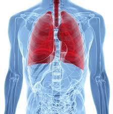 Resultado de imagen para tuberculosis