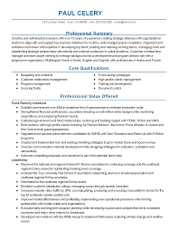 creating resume summary professional resume cover letter sample creating resume summary accounting resume tips for creating a winning resume professional non profit executive templates