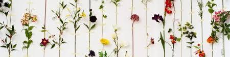 Купить Искусственные <b>цветы</b> в Москве. Интернет-магазин Мята