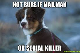 Not Sure if Mailman Or Serial Killer - Unsure Dog | Make a Meme via Relatably.com