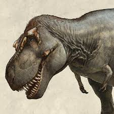World's biggest <b>T. rex</b> discovered in Canada