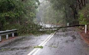 Bildresultat för bilder storm urd