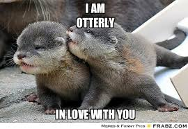 I am Otterly in love with you. #Meme | Cool & Cute Stuff ... via Relatably.com
