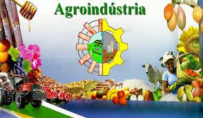 Curso Técnico em Agroindustria