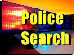Image result for police search