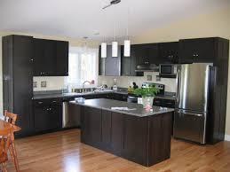 best kitchen cabinet paint kit best kitchen furniture