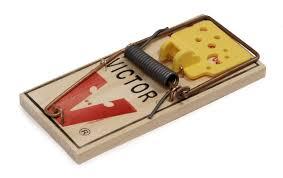 mousetrap mousetrap