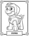Раскраски щенячий патруль онлайн бесплатно раскрашивать