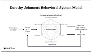 dorothy e johnson behavioral system model nurseslabs johnson s behavioral system model
