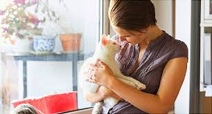 No Such Thing As <b>Crazy Cat Ladies</b>: Study