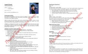 resumes personal touch career services sample nanny resume