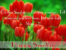 Happy-Sunday-rose-wallpaper.jpg via Relatably.com