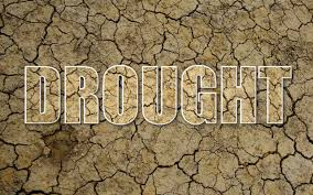 essay on drought essay on drought speech about drought my study essay on drought