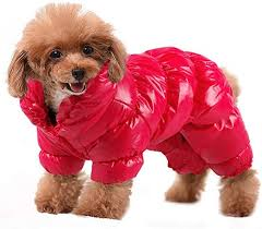 PET ARTIST Winter Puppy Dog Coats for Small Dogs ... - Amazon.com