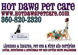 new flyers hot dawg pet care flyer pet sitter dog walker pet care southside bellingham fairhaven edgemoor sehome hill cat sitter
