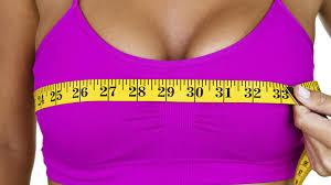 Resultado de imagen de imagenes pechos mujeres