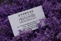 Цветочный клуб ПАЛИТРА- цветы, праздничные, корпоративные ...