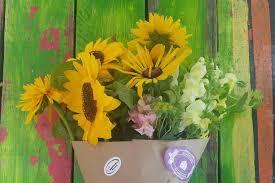 <b>Summer Flower</b> CSA - GreenHouse17