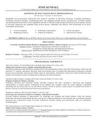 resume resume objective lines good objectives on a resumes a    a