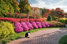 Small Picture Flower Gardens In Pa Soft Decorating