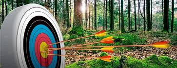 Image result for archery pictures