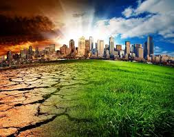 environmental pollution essays environmental pollution essays get essay on pollution of environment