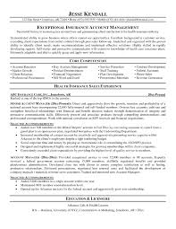 account manager resume objective template design resume examples s manager resume objective s account manager in account manager resume objective 3258