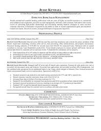 Resume Examples For Sales Directors     BORH