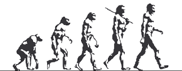 Image result for evolution monkey sequence