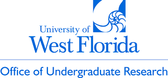 university of west florida application essay 91 121 113 106 university of west florida application essay