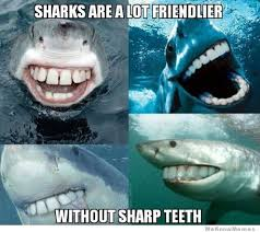 Just Some Friendly Sharks | WeKnowMemes via Relatably.com