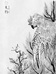 Image result for Tengu
