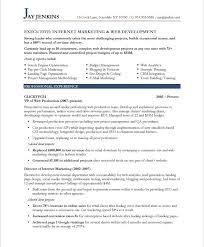internet marketer   free resume samples   blue sky resumesold version old version